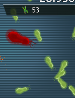 Red bacteria.png